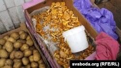 Belarus - Markets trade in radioactively contaminated berries and mushrooms. Homel, 28Jun2012