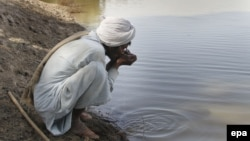 A man drinks contaminated water from a stream in the Cholistan Desert, near Bahawalpur, Pakistan.