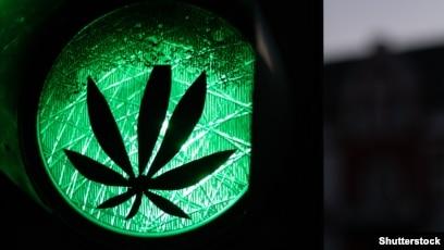 Грузинская песня марихуана купить гидропонная установка для выращивания конопли