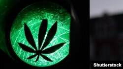Un sticker cu pe un semafor, care simbolizează legalizarea canabisului