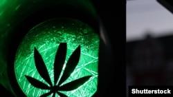 Допустимий вік для придбання марихуани у Канаді становить 18 або 19 років залежно від провінції