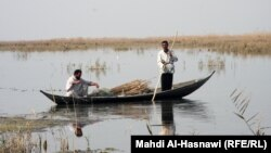 Iraq – marshes, Dhi Qar province, undated