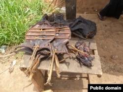 Мясо диких животных в Западной Африке - один из возможных источников заражения лихорадкой Эбола