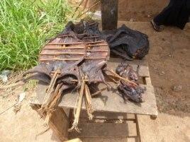 Батыс Африкадағы жабайы жануарлар еті - Эбола індетінің бір себебі.