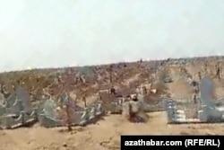 Новых захоронений гораздо больше старых могил, Кладбище в северной части на окраине Ашхабада, Июль, 2020