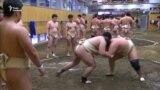 Трамп відвідає чемпіонат сумо. Японці вже обурені – відео