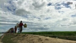 Rohingya Refugees Still Streaming Into Bangladesh