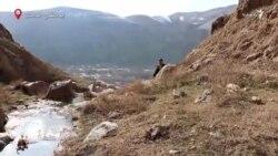 شکار غیرقانونی در افغانستان