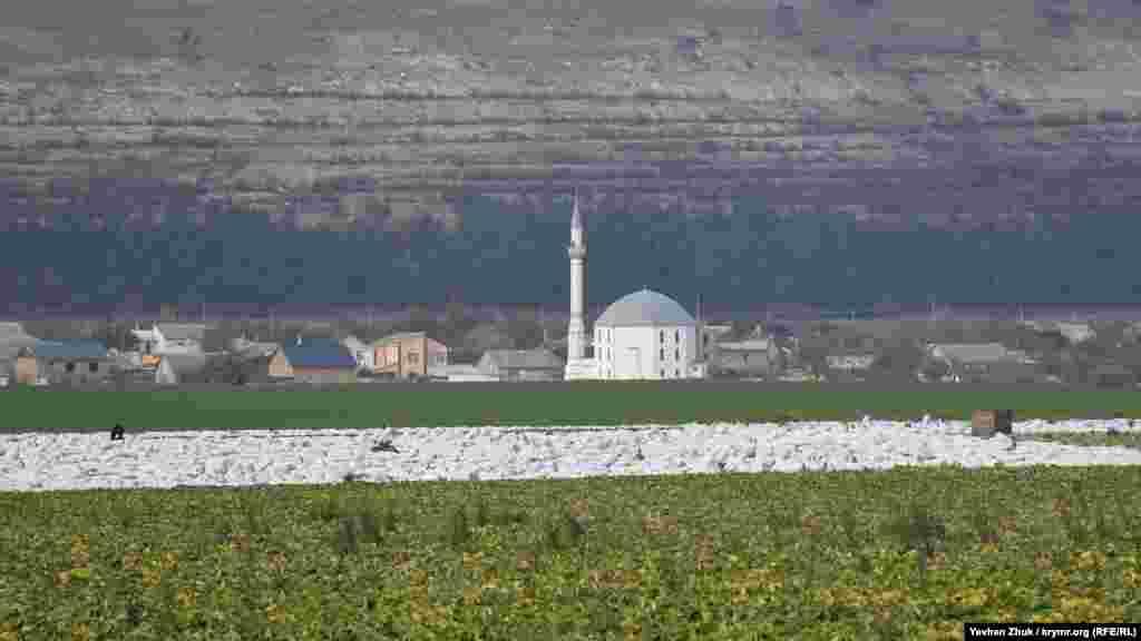 За полем виднеется село Трехпрудное и мечеть Терек-Эли джамиси. До 1948 года село называлось Терек-Эли, что переводится как «край деревьев»