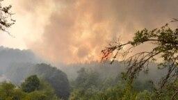 Пожар кај делчевското село Нов Истевник, 5 август 2021