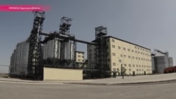 Под Одессой открылся маслоэкстракционный завод