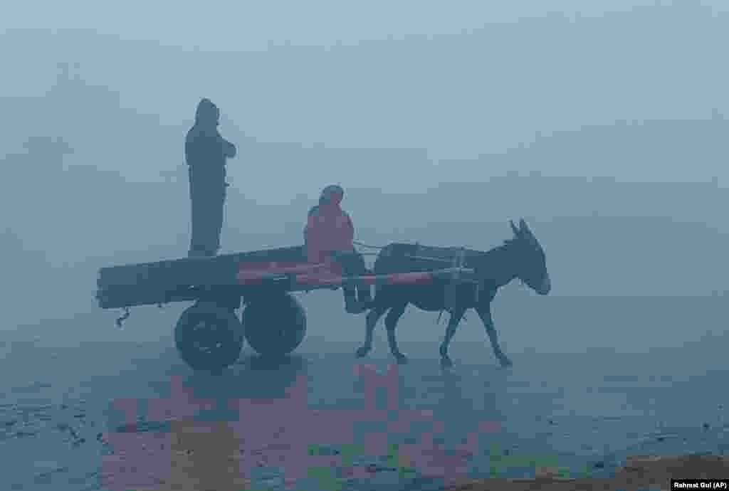 Afghan men ride a donkey cart in heavy fog in Kabul. (AP/Rahmat Gul)