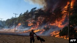 آتشسوزی در جنگلهای ترکیه