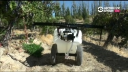 Новые технологии смогут существенно облегчить труд фермеров