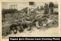 Тіла вбитих на тюремному подвір'ї