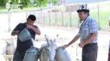 Сотни тысяч кыргызстанцев до сих пор не имеют доступа к чистой питьевой воде