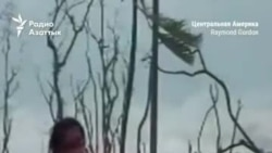 Ураган «Йота» ударил по Центральной Америке