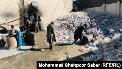 کارخانه تولید پشم شیشه در هرات