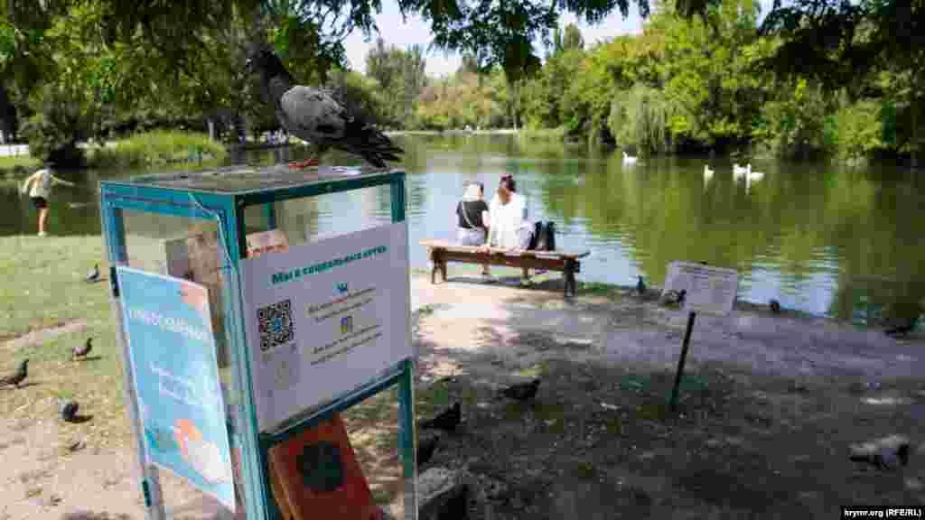 Голуб «на варті» книгообмінника на березі паркового ставка