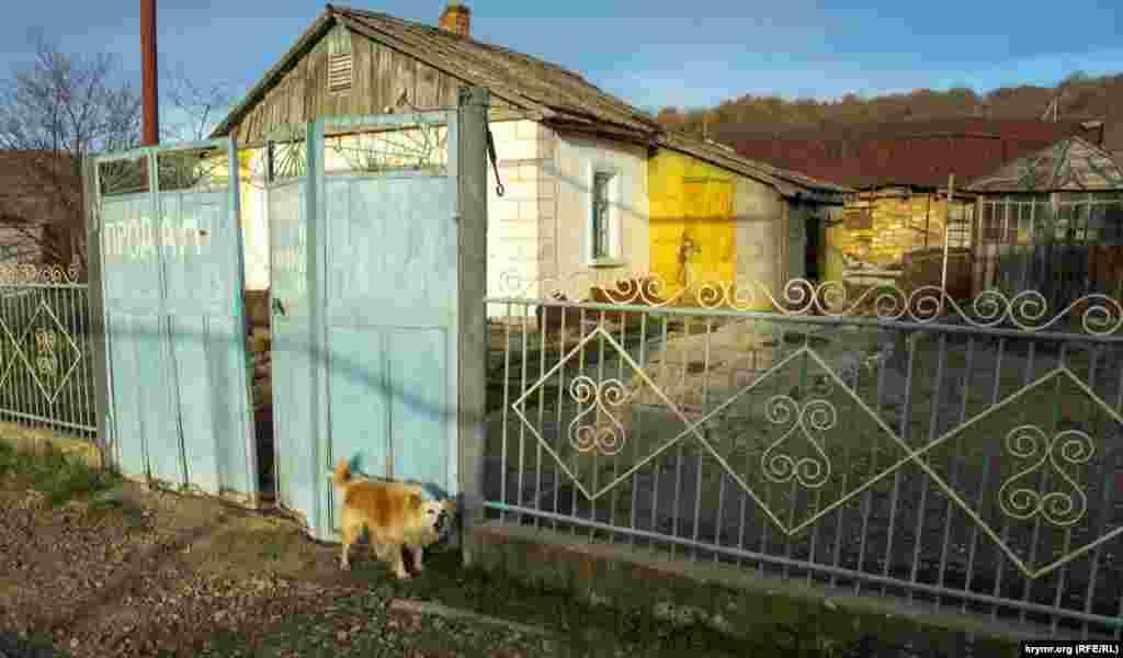 Злий «охоронець» старої сільської садиби, яку виставили на продаж