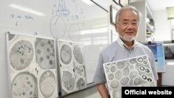 Ёсинори Осуми - специалист по клеточной биологии из Японии - стал Нобелевским лауреатом в области физиологии и медицины