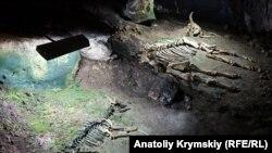 Поход в Мамонтовую пещеру в Крыму (фотогалерея)