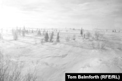 """""""We haven't yet crossed out of the taiga into the tundra, as there are still trees."""""""