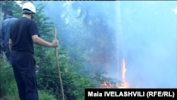 Имерети, Мцхета-Тианети, Кахети, Шида Картли – в этих регионах уже несколько дней пытаются потушить лесные пожары