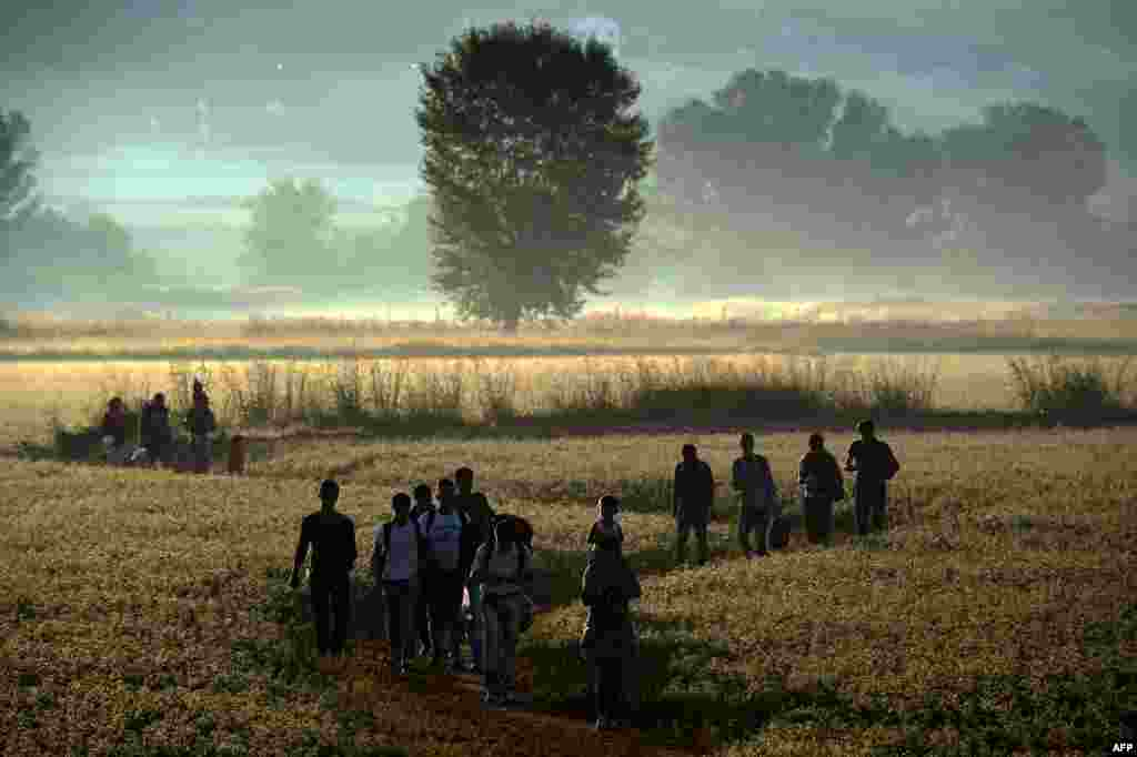 Migrants walk through a field to cross the border from Greece to Macedonia near the Greek village of Idomeni on August 30. (AFP/Aris Messinis)