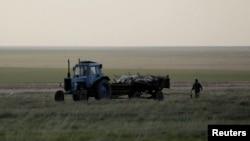 Трактор вывозит туши погибших сайгаков