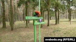 Памятны знак на сымбалічнай магіле Зьмітра Жылуновіча