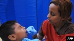 Главное же выдвигаемое обвинение против ВОЗ - необоснованное объявление пандемии свинного гриппа