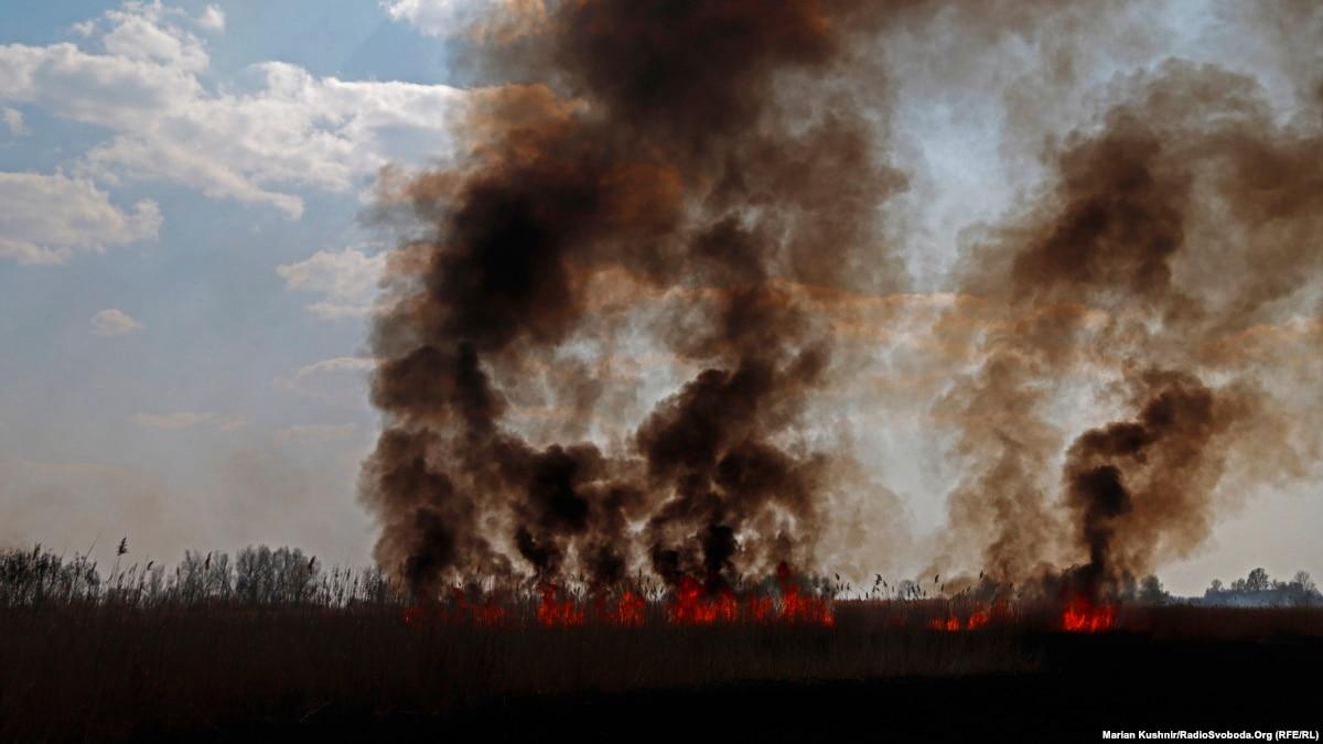 Не курите траву! На Полтавщине огонь приблизился к селу
