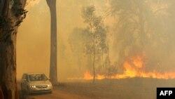 Zjarret në Australi
