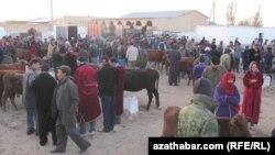 Рынок домашнего скота, Туркменистан