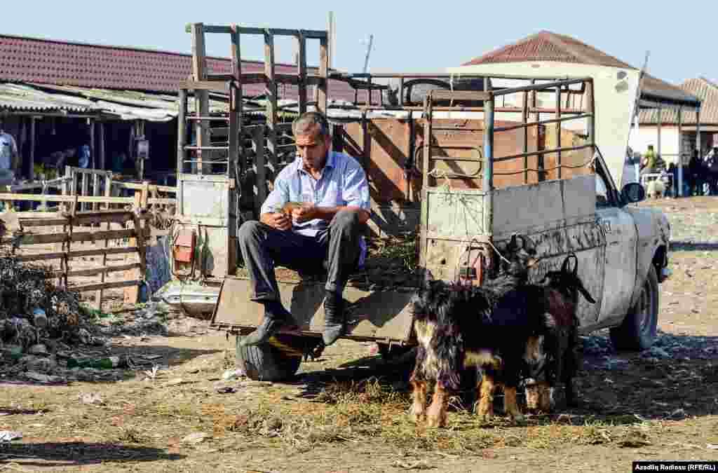 Satılan satılıdı, geriyə iki keçi qaldı.