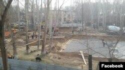 Вырубка чинаровой рощи на шестом квартале жилмассива Чиланзар.
