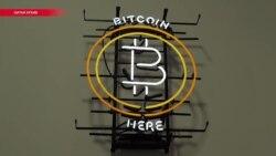 Биткоин, майнинг, блокчейн и котята: что нужно знать о криптовалютах