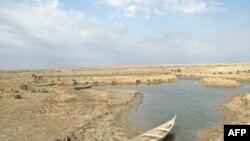 أحد الأهوار التي تعرضت للجفاف في جنوب العراق