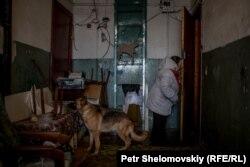 Лидия Шоличева с Югром в гостях у Ольги Хозяиновой