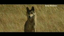 """""""Тотем волка"""""""