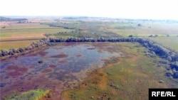 Урочище «Чорний мочар»: тут постраждали понад 10 тисяч гектарів угідь