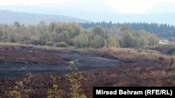 U najnovijem požaru izgorjelo je oko 80 posto prirodnog dijela ove submediteranske močvare