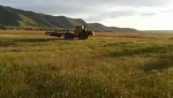 Шығынға батып, жерсіз қалған фермер