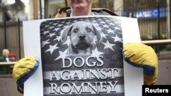 """New Yorkda """"İtlər Romney-ə qarşı"""" aksiyası. 14 fevral, 2012"""