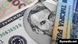 Belarus -- US dollar and Belarusian rouble banknotes, 14May2011