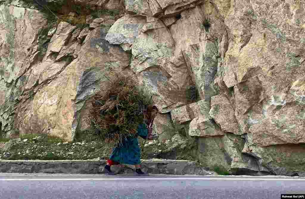 An Afghan woman carries firewood on her back in Kabul. (AP/Rahmat Gul)