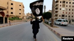 """مسلح من تنظيم """"داعش"""" في الرقة السورية"""