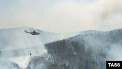 در سال ۲۰۰۶ ميلادی در مجموع، ۳۹ هزار و ۷۶۱ هکتار جنگل در ايتاليا در آتش سوزی های عمدی از بين رفت.