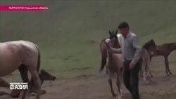 В Нарыне начался сезон кумыса